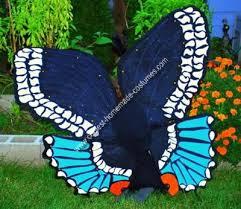 Blue Butterfly Halloween Costume 31 Hayden Images Halloween Ideas Butterfly