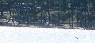 update wellfleet drowning victim identified