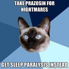 Sleep Paralysis Meme - friday 24 july 2015 meme images chronic illness cat