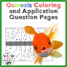 cell transport osmosis coloring page or poster and application