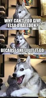 Dog Jokes Meme - dog shaming memes humor and funny jokes