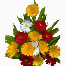 online flowers delivery best 25 birthday flower delivery ideas on birthday