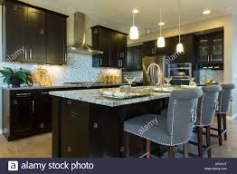 Upgrade Home Design Studio by How To Upgrade And Install Your Kitchen Faucet Kitchen Design