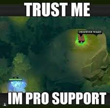 Dota 2 Memes - when you have pro support in your team dota 2 steemit