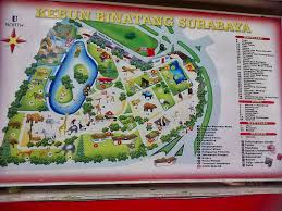 Washington Dc Zoo Map by Zoo News Digest Surabaya Zoo Gets It In The Neck Again
