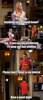 Meme Theory - 30 hilarious memes on the big bang theory wapppictures com