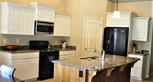 How Much To Have Kitchen Cabinets Professionally Painted 10 Painted Kitchen Cabinet Ideas