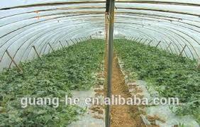100 biodegradable plastic mulch film soil mulching for vegetable