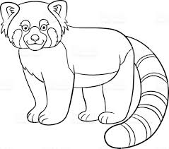 coloring pages little cute red panda smiles stock vector art