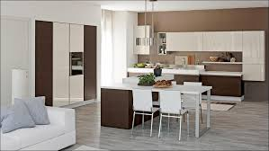 Buy Kitchen Cabinet Doors Only Kitchen Photos Of Kitchen Cabinets Replacement Cabinet Doors