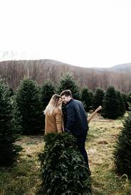 a mountain tree hunt with old navy fresh exchange