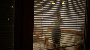 somebody spying on a from the street through the window
