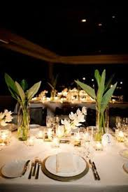 Potted Plants Wedding Centerpieces by 60 Unique Ways To Use Potted Plants In Your Wedding Orchid
