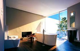 bathroom handsome bathroom interior design ideas lavatory