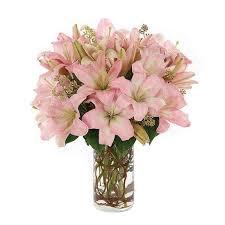 Chapel Hill Florist Chapel Hill Flowers Flower Inspiration