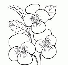 beautiful flower vase with flowers drawing coloring pages of