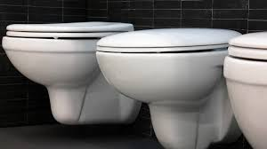 Electronic Bidet Toilet Seat Review 6 Best Bidet Toilet Seats 2017 A Better Bum For Any Budget