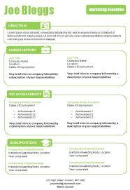 cv template professional resume cv template resumes