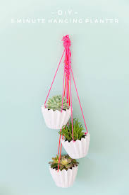 Diy Hanging Planter by 206 Best Planted Images On Pinterest Plants Diy And Deko