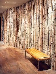 aspen wood wall aspen tree wallpaper simple wallpaper leaves leaves beautiful