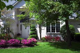 design your own front yard sacramento landscaping evergreen shrubs and trees azalea capital