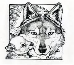 coloring pages teach kids mexican wolf wildlife