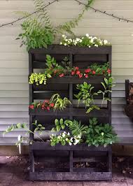 red house garden how to make a vertical pallet garden for shade