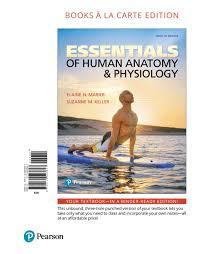 Human Anatomy And Physiology Pdf File Marieb U0026 Keller Essentials Of Human Anatomy U0026 Physiology 12th