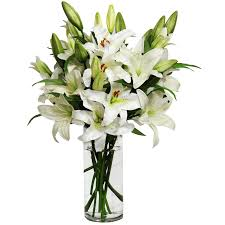 White Lily Flower Lilies In A Vase Transparent Png Stickpng