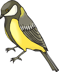 goldfinch bird wildlife golden png image pictures picpng
