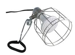 Zoo Med Lighting by Amazon Com Zoo Med Wire Cage Clamp Lamp Pet Habitat Lights