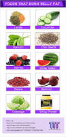 top 10 natural foods that burn belly fat best fat burning foods