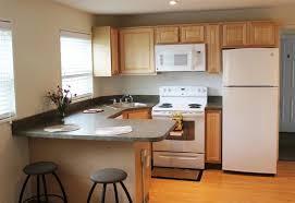 28 1 Bedroom Apartments For Rent In Buffalo Ny 1 Bedroom by Collegiate Village Buffalo Ny Apartment Finder