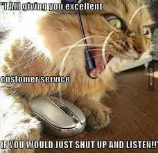 Working Cat Meme - working in retail call centre cat customer service humour