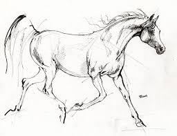 best 25 horse sketch ideas on pinterest horse drawing tutorial