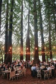 best 25 forest wedding reception ideas on pinterest forest