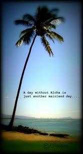 hawaiian wedding sayings 15 best aloha friday images on pinterest aloha friday happy