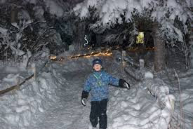 Anchorage Zoo Lights by Four Reasons To Visit The Alaska Zoo This Winter Ak On The Go