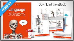 Anatomy Of Human Body Pdf The Language Of Anatomy Proko