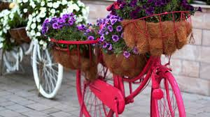 50 best old bikes with flowers ideas vintage bicycle decor youtube