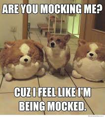 Corgi Puppy Meme - 17 funny corgi memes from around the world greetyhunt