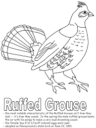 grouse animal coloring pages exprimartdesign com