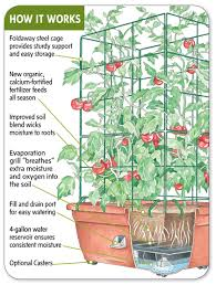 all in one tomato success kit buy from gardener u0027s supply