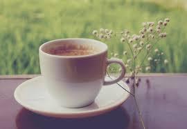 Salep Hd wallpaper coffee cup tea caffeine tableware serveware salep