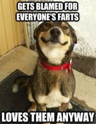 Dog Jokes Meme - dog funny joke animal joke for kids animalfunny
