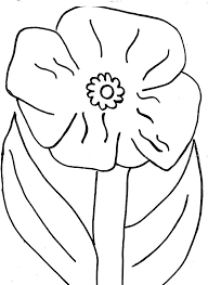 poppy flower picture coloring page color luna