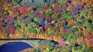 New York State Fall Foliage Map by Best Places To See Fall Foliage In The Northeast Newsday