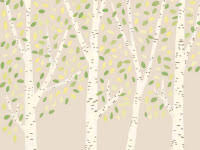 birch wrapping paper wrapping paper liziboyd