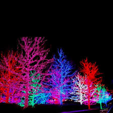 99 best christmas lights images on pinterest christmas lights