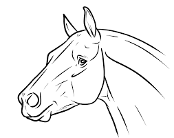 animal coloring book pages google search coloring book art